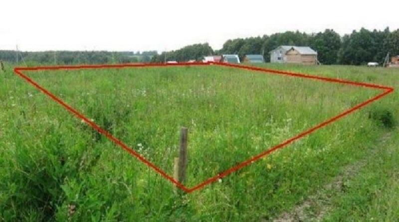 Кабмин подготовил законопроект об отмене права каждого украинца на два бесплатных гектара земли