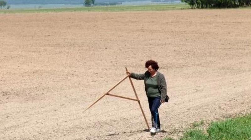 Рынок земли: кто через два месяца сможет покупать участки в Украине