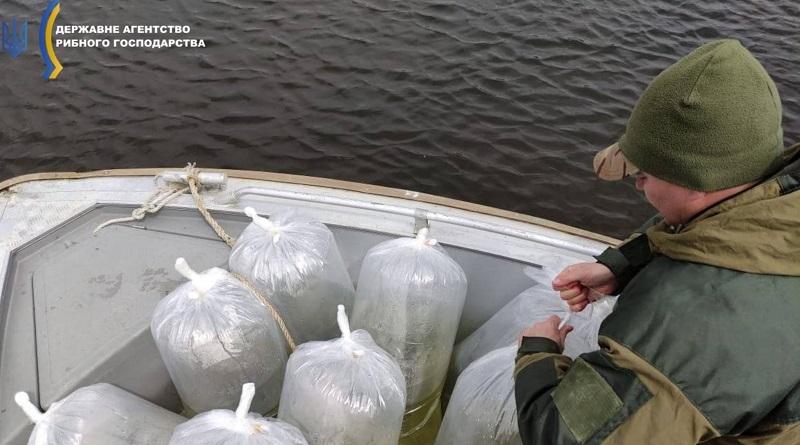 Державне агентство рибного господарства України. Зариблення_2021.