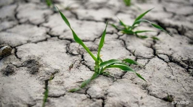Две трети земли Украины стали зоной рискованного земледелия