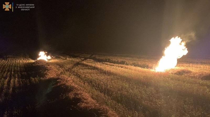 В Николаевской области из-за поджогов выгорело более 33 га сухостоя