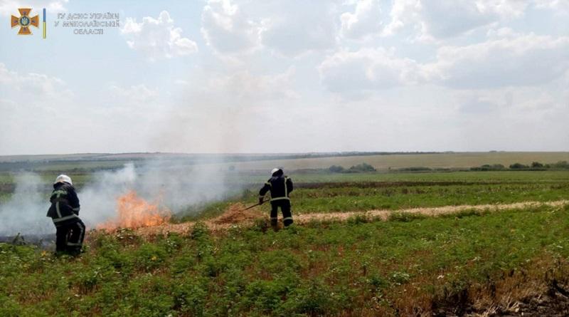 В Вознесенском районе масштабный пожар в поле: горит более 4 га