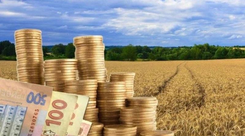 Украинцам напомнили о земельных налогах: кого освободят от платежей