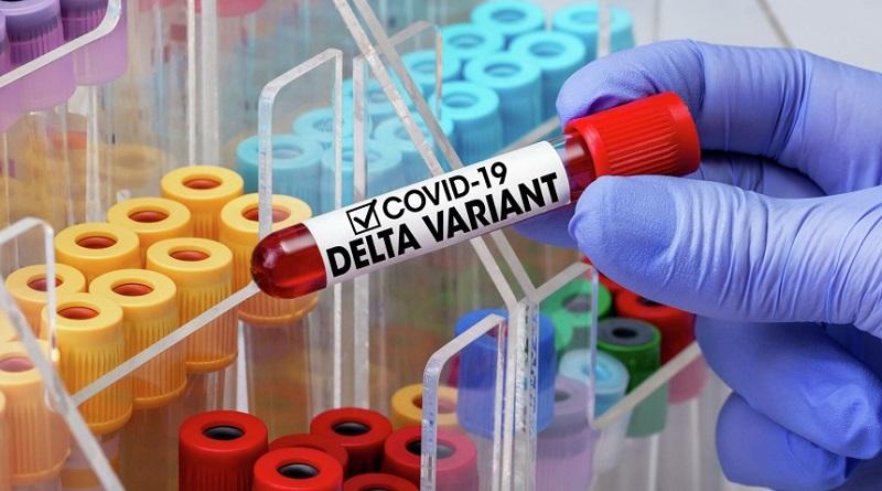 Ученые заявили об атаке штамма «Дельта» на вакцинированных
