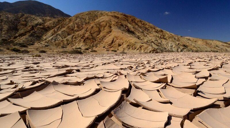 К 2050 году степная часть Украины может превратиться в засушливую пустыню