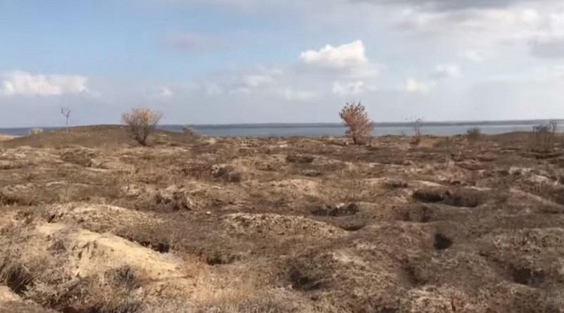 В Николаевской области некрополь «Ольвии» страдает от «черных археологов» (видео)