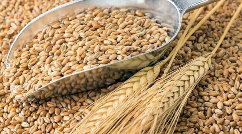 В пгт Арбузинка, сотрудница госпредприятия помогла преступникам украсть 158 тонн зерна