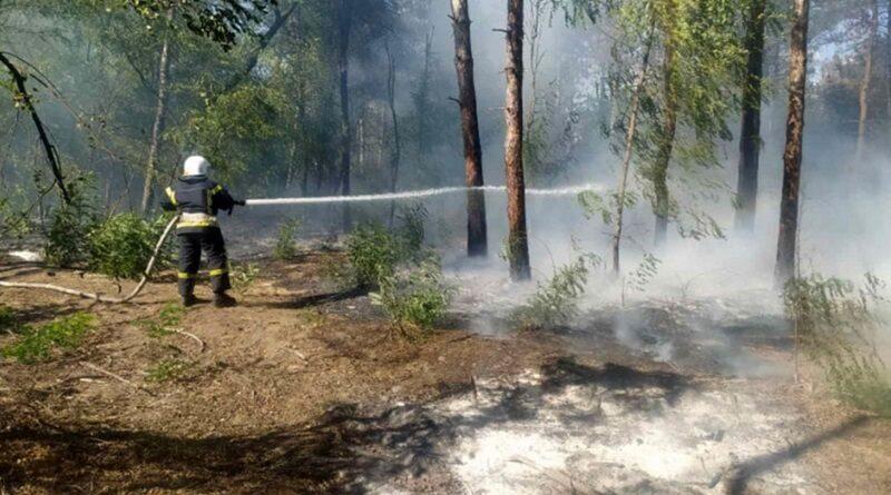 В Николаевской области горели «Бугские хутора» - причиной пожара стал поджог