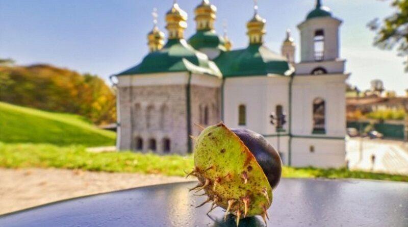 В Винницкой области сторонники ПЦУ и УПЦ устроили потасовку